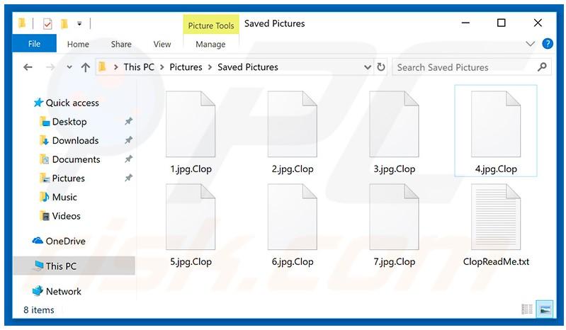 """Zu sehen ist ein Screenshot eines Ordners mit Dateien, die die Erweiterung """".Clop"""" aufweisen. Bild: PC risk"""
