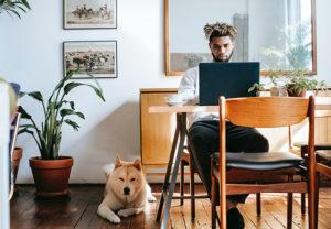 Ein Mann arbeitet im Remote Workspace am Esstisch, neben ihm liegt sein Hund. Bild: Pexels/Zen Chung